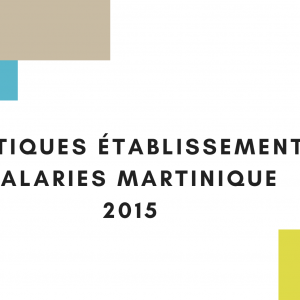 Aract-It Martinique STATISTIQUES ETABLISSEMENTS ET SALARIES MARTINIQUE 2015